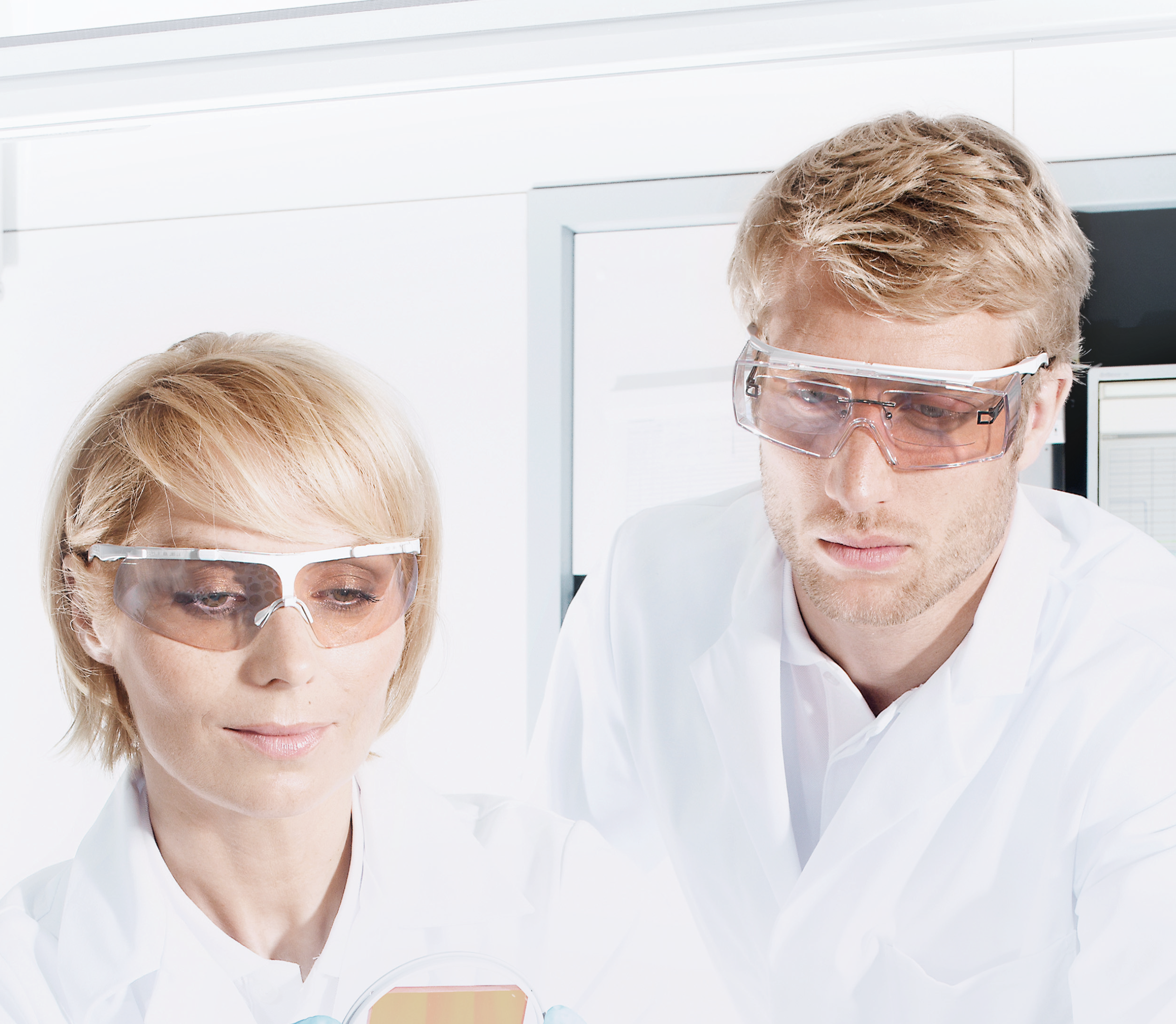 safety eyewear food industry
